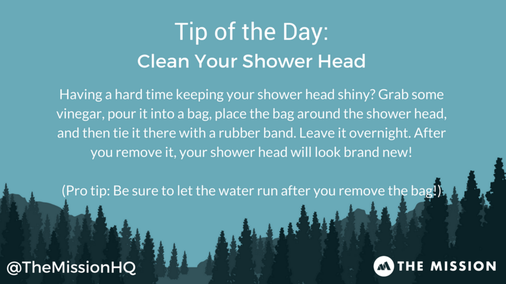 Clean you shower head, tip of the day, The Mission HQ
